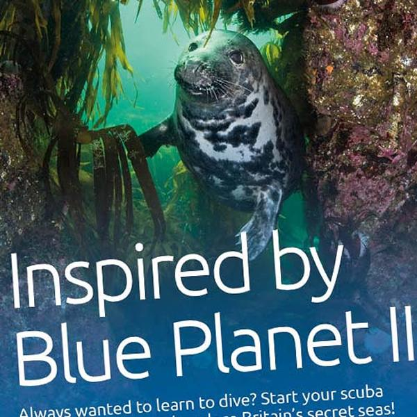 Thumbnail photo for Download Blue Planet II posters