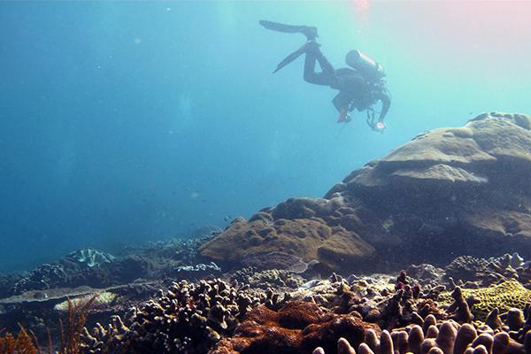Thumbnail photo for Looking for your next adventure? Here's 6 reasons to take the plunge!