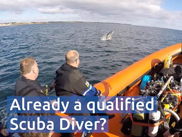 Thumbnail photo for Free video for clubs to attract already trained scuba divers