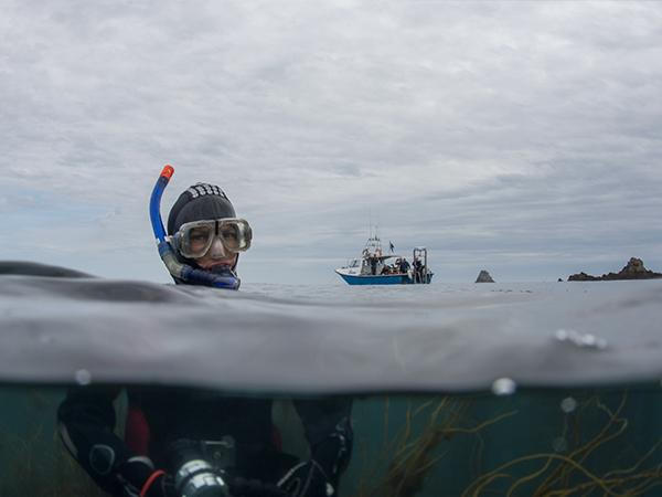 Thumbnail photo for Discover the best of British snorkelling