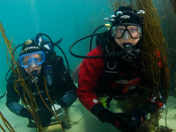 BSAC Diving Conference to go biennial