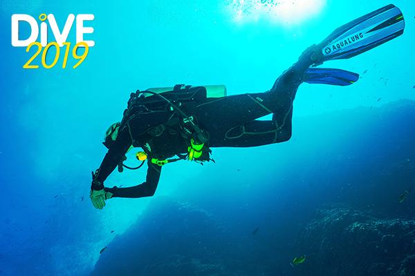 Thumbnail photo for Ticket offers for DIVE 2019