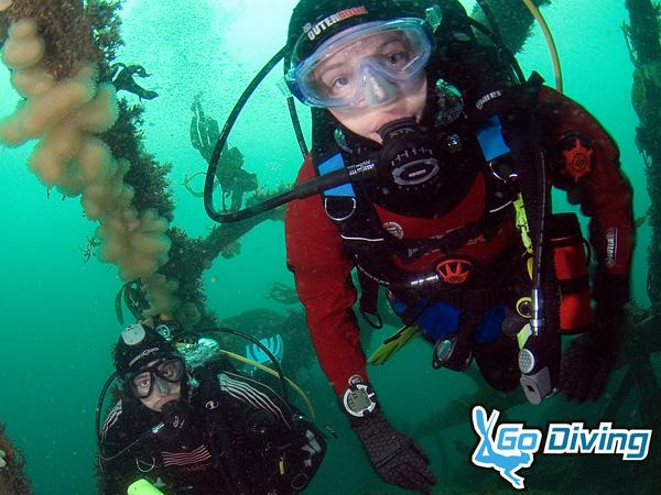 Thumbnail photo for Get ready to Go Diving! New dive show for 2019