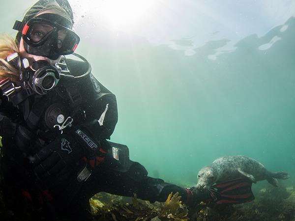 Thumbnail photo for How to become a scuba diver during Covid