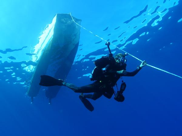 Thumbnail photo for Exclusive discounts as a BSAC member with Regaldive
