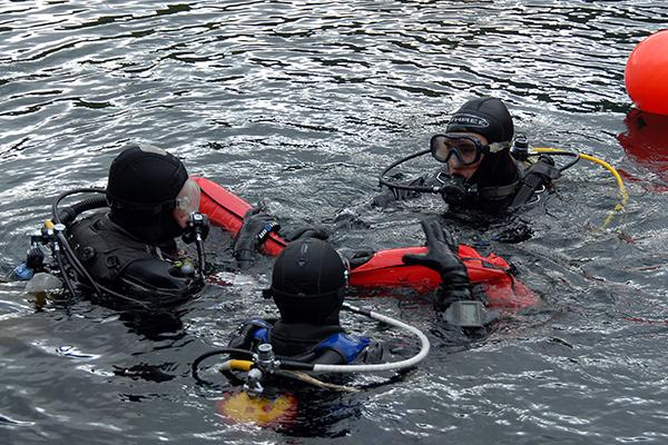 What is an ipo diving medical