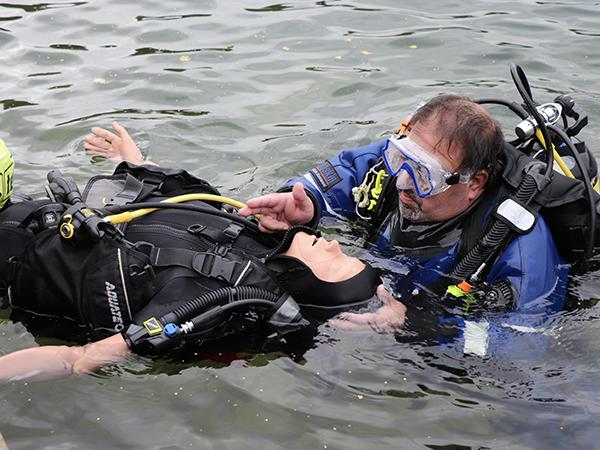 Thumbnail photo for New Sports Diver update includes essential guidance on IPO