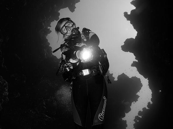 Thumbnail photo for The Diver