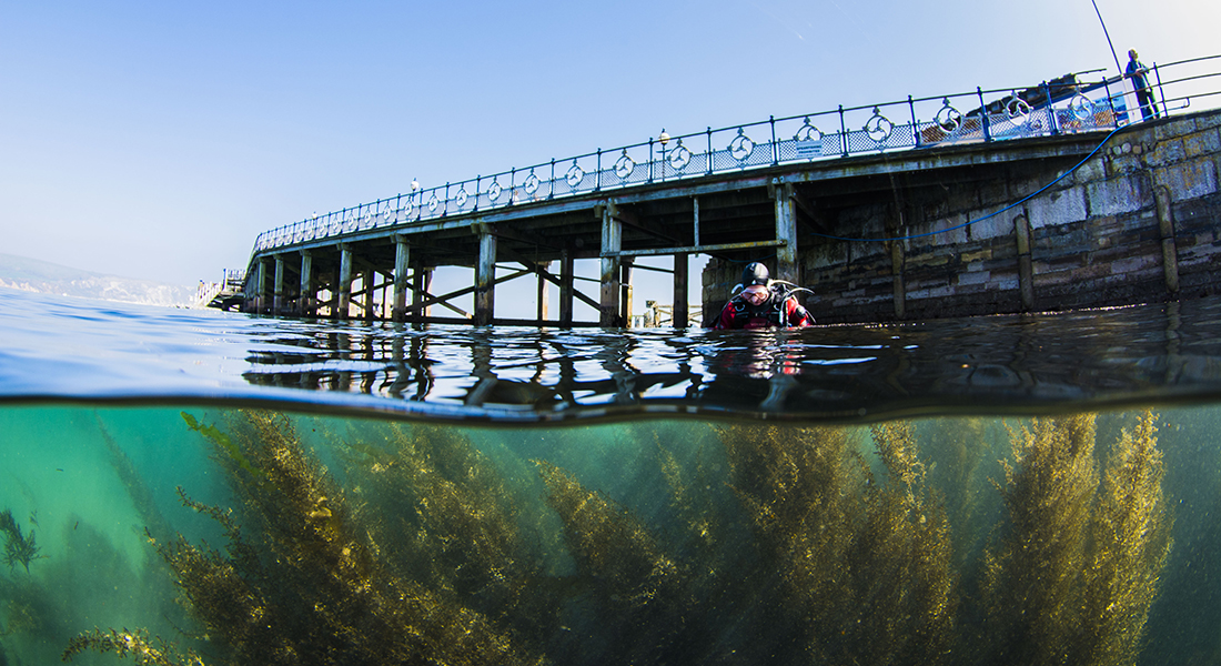A diver at the surface near a pier at Swanage