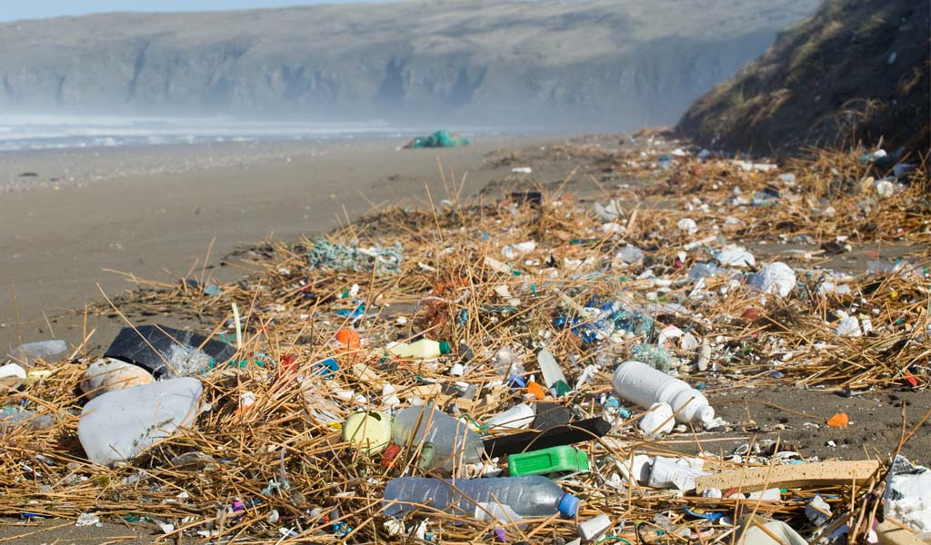 The scale of the plastic problem on UK beaches - Greg Martin