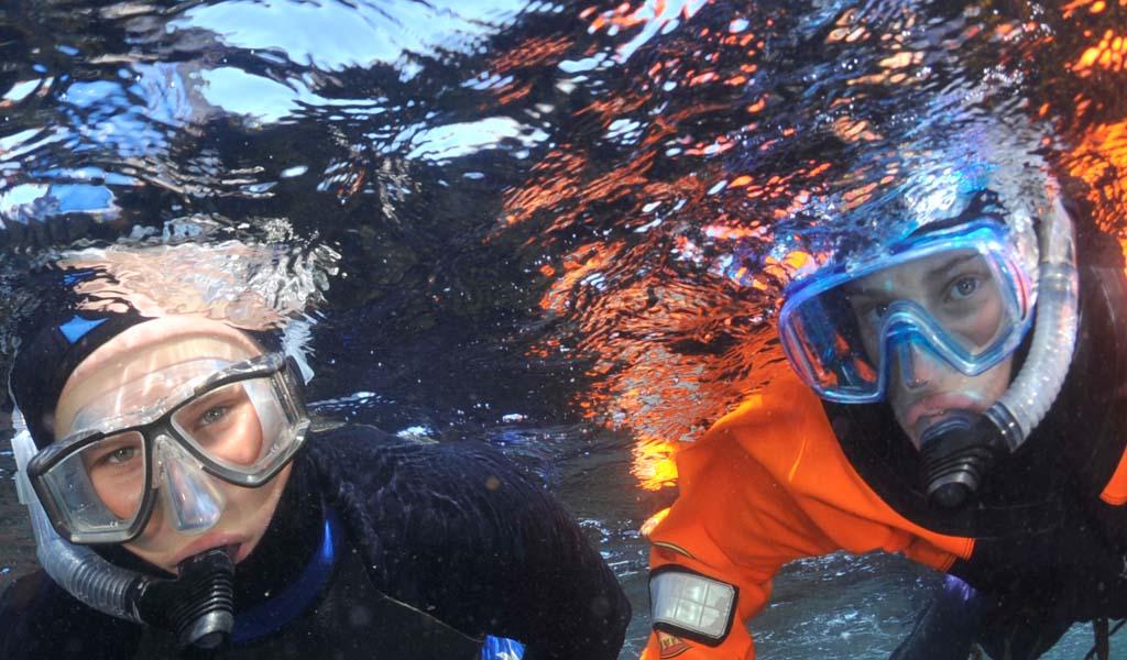Best Full Face Snorkel Mask 2020 Growing concern over full face snorkel masks   British Sub Aqua Club
