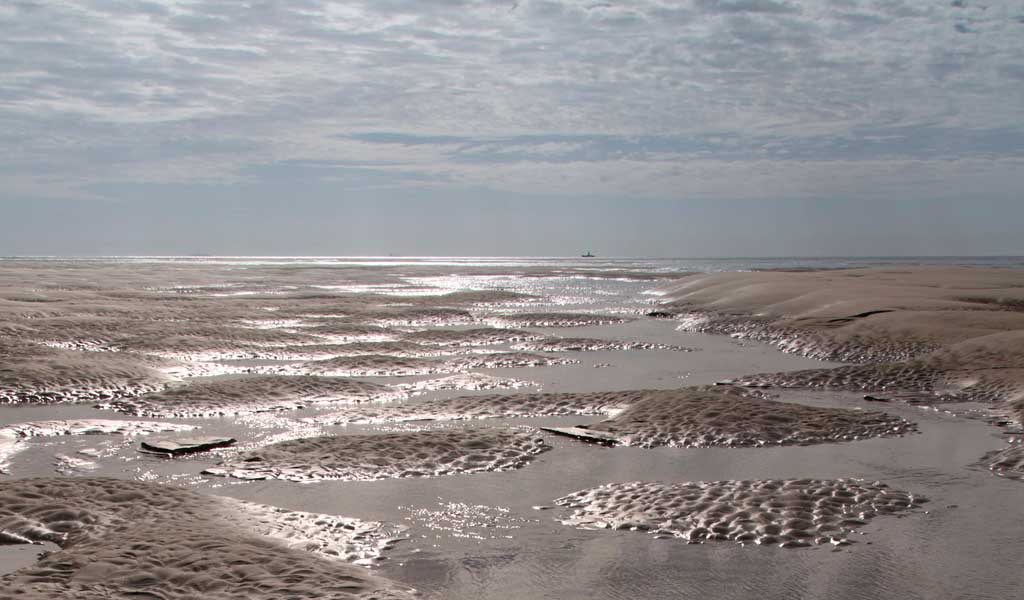 Help protect the Goodwin Sands from destruction by dredging