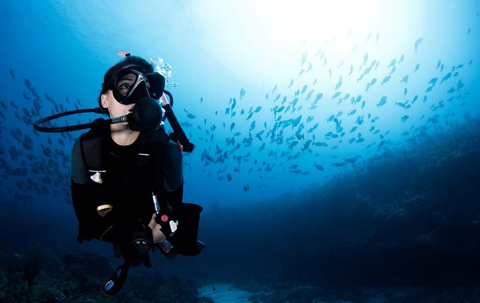 Join BSAC and Get Free Scuba Refresher Training